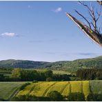 """franconian landscape"""