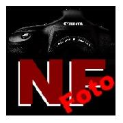 Frank - NF-Foto