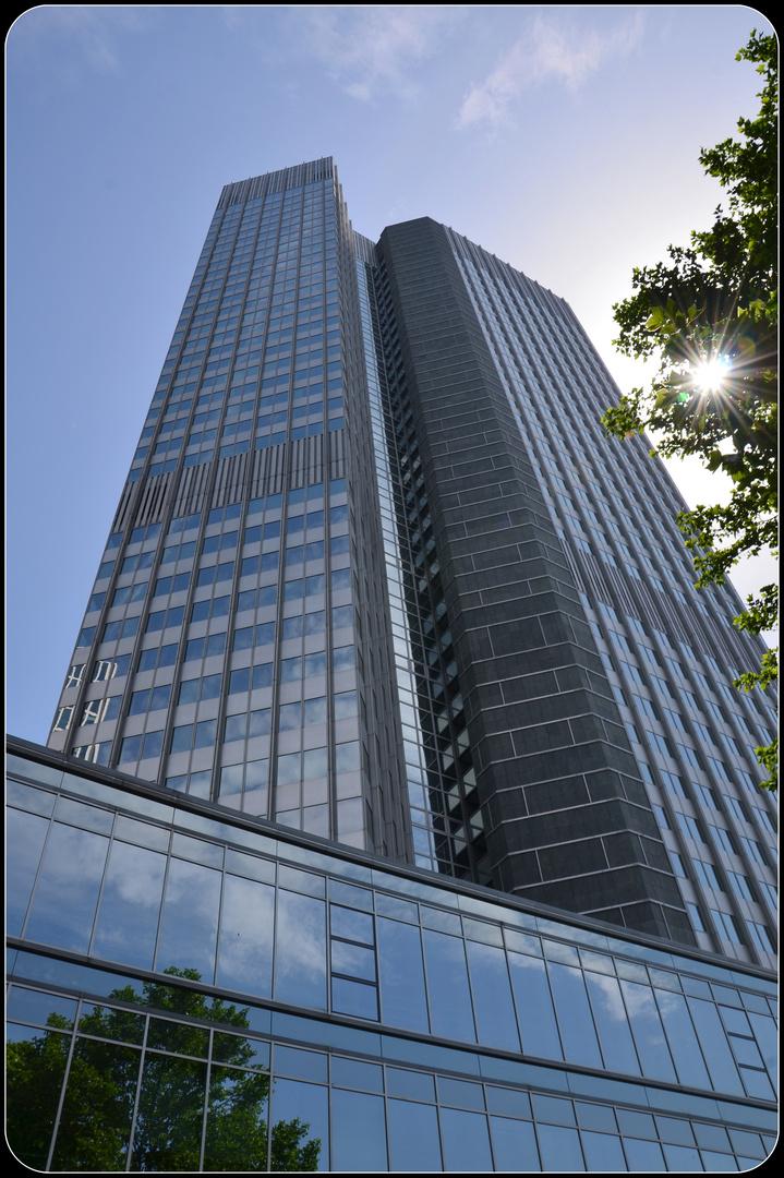Frankfurt EZB