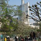 Frankfurt-Kontraste