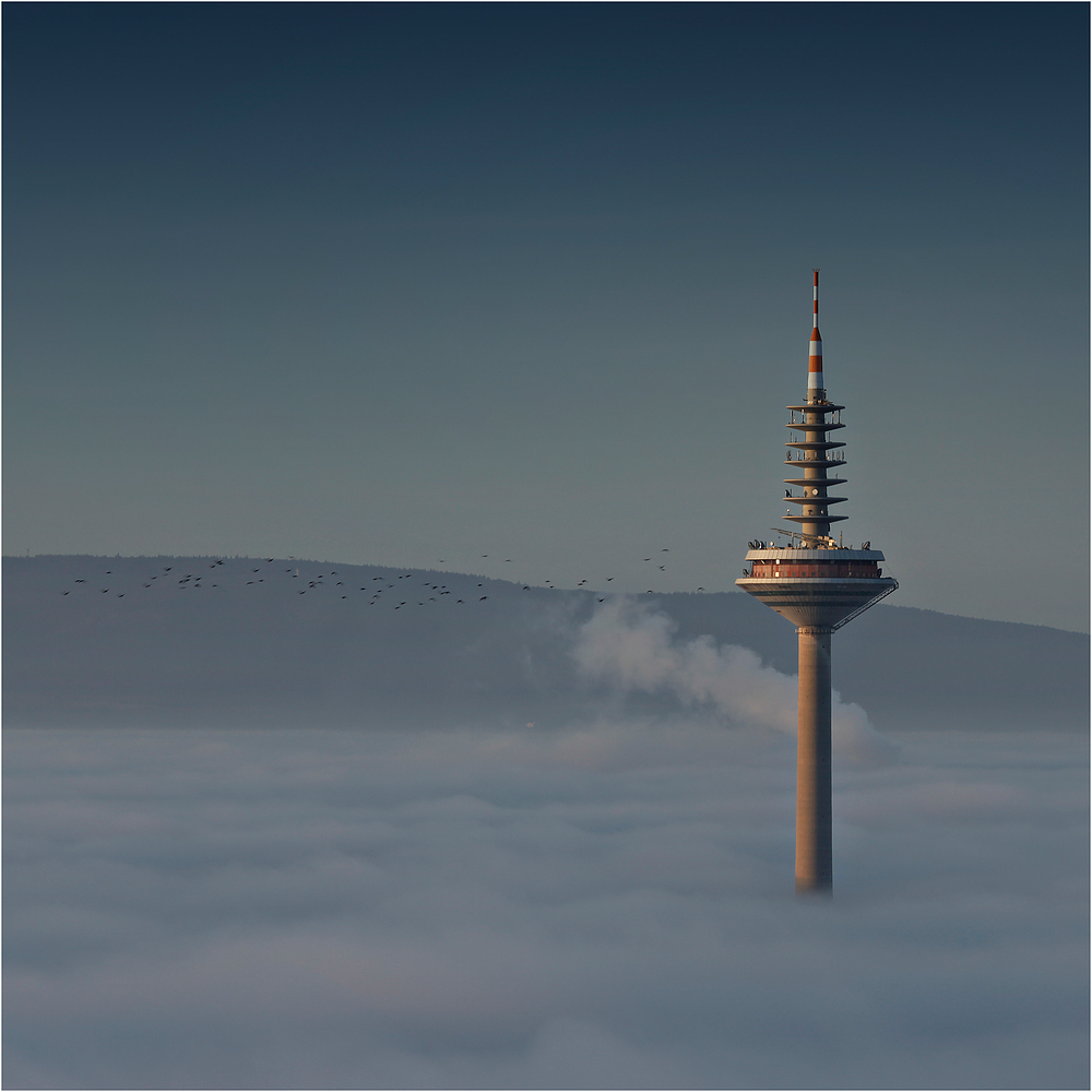 Frankfurter Spargel an Nebelsüppchen