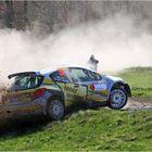 Franz Wittmann / Klaus Wicha - Hessen Rallye Vogelsberg - Peugeot 207 S2000
