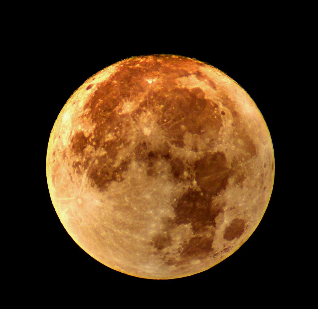 Frau Luna / Mond um 4.00 am 14.11.2016