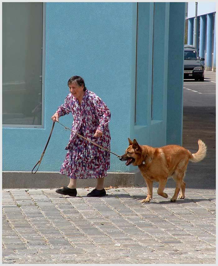 frau mit hund Foto & Bild   streetfotografie, menschen
