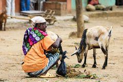 Frau mit ihren Ziegen...