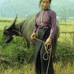 Frau mit Wasserbüffel