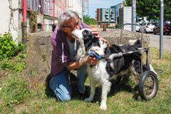 Frauchen mit Rolli-Hund Scotch