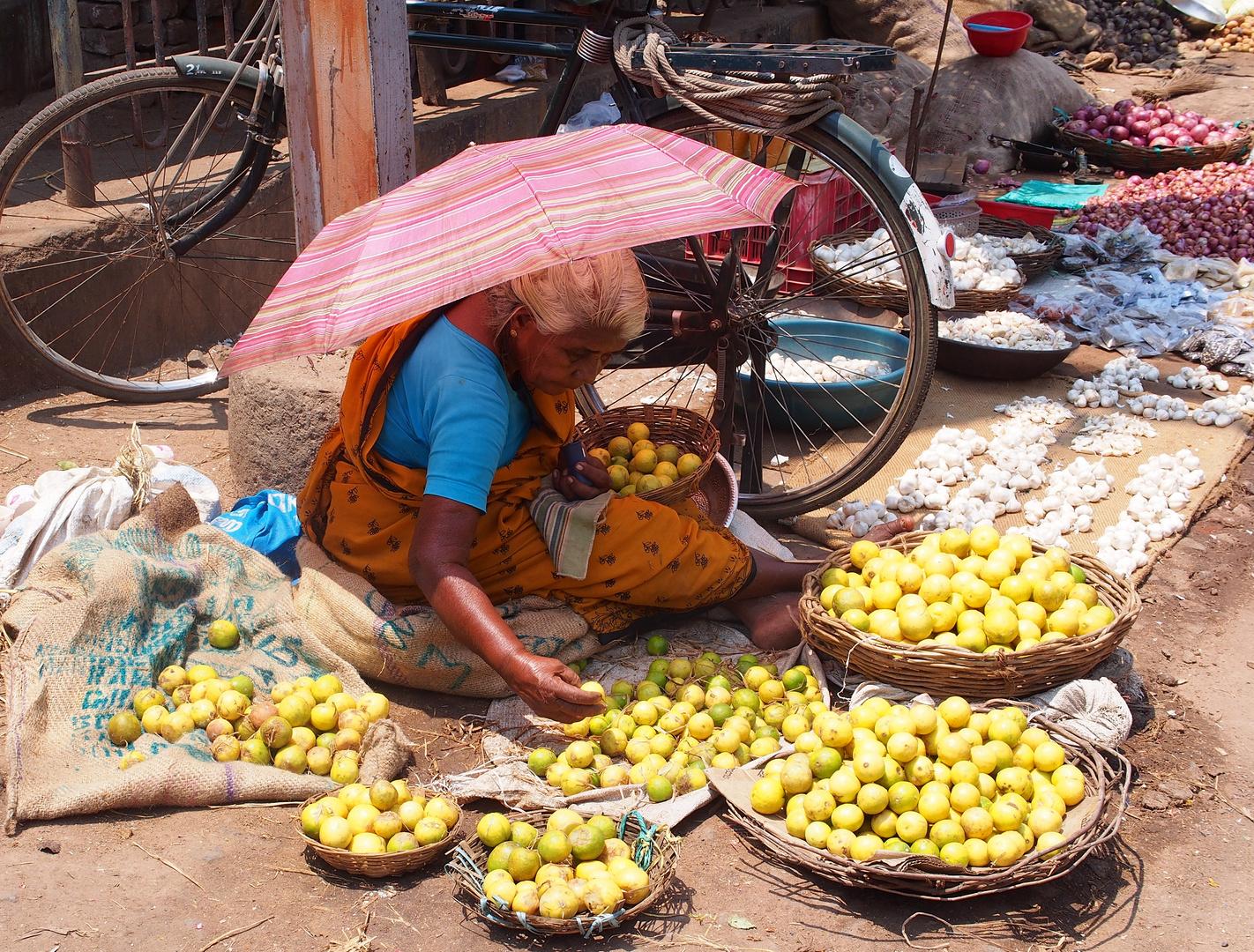 Frauen in Indien 7