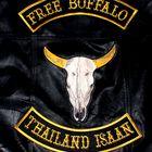 Free Buffalo