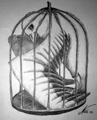 Freedom in a Cage