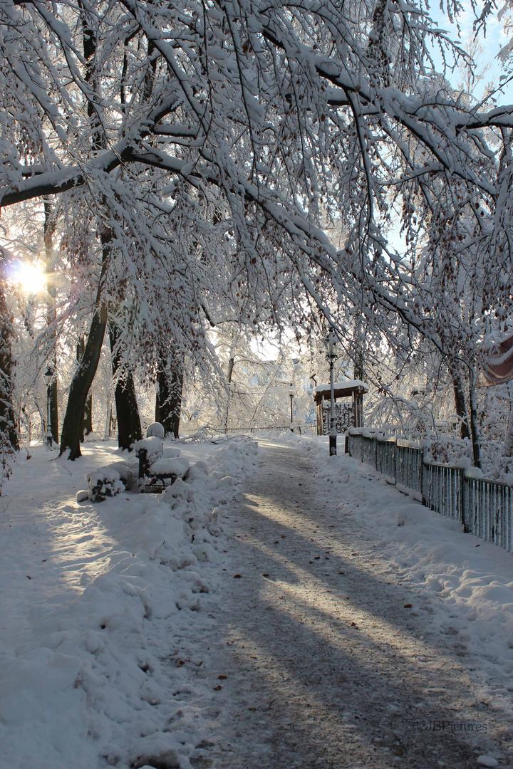 Freiberg im Schnee