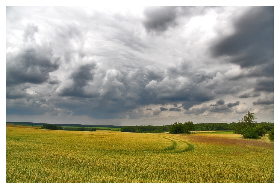 Freiberg-Sachsen