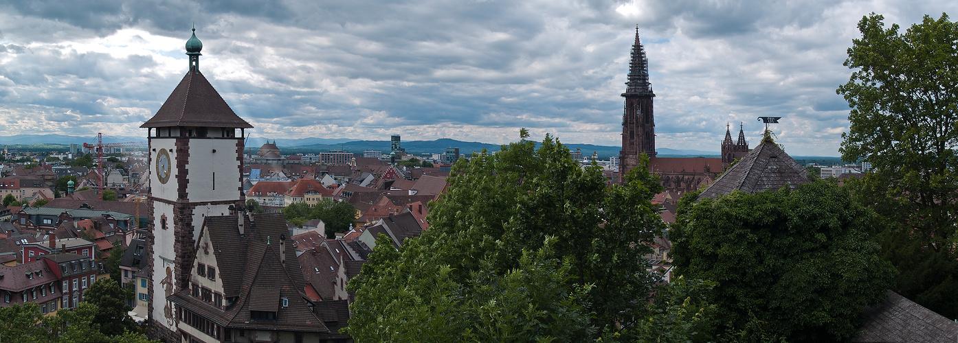 -Freiburgblick-