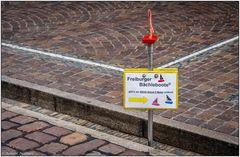 Freiburger Bächle