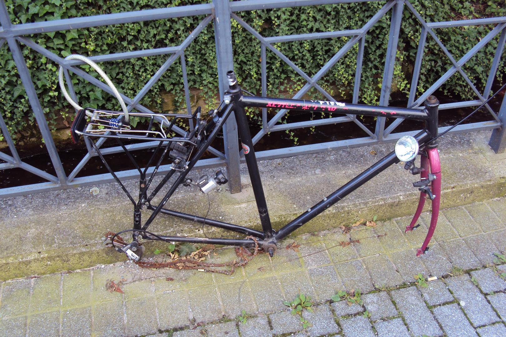 Freiburger Fahrradleiche (die erste)