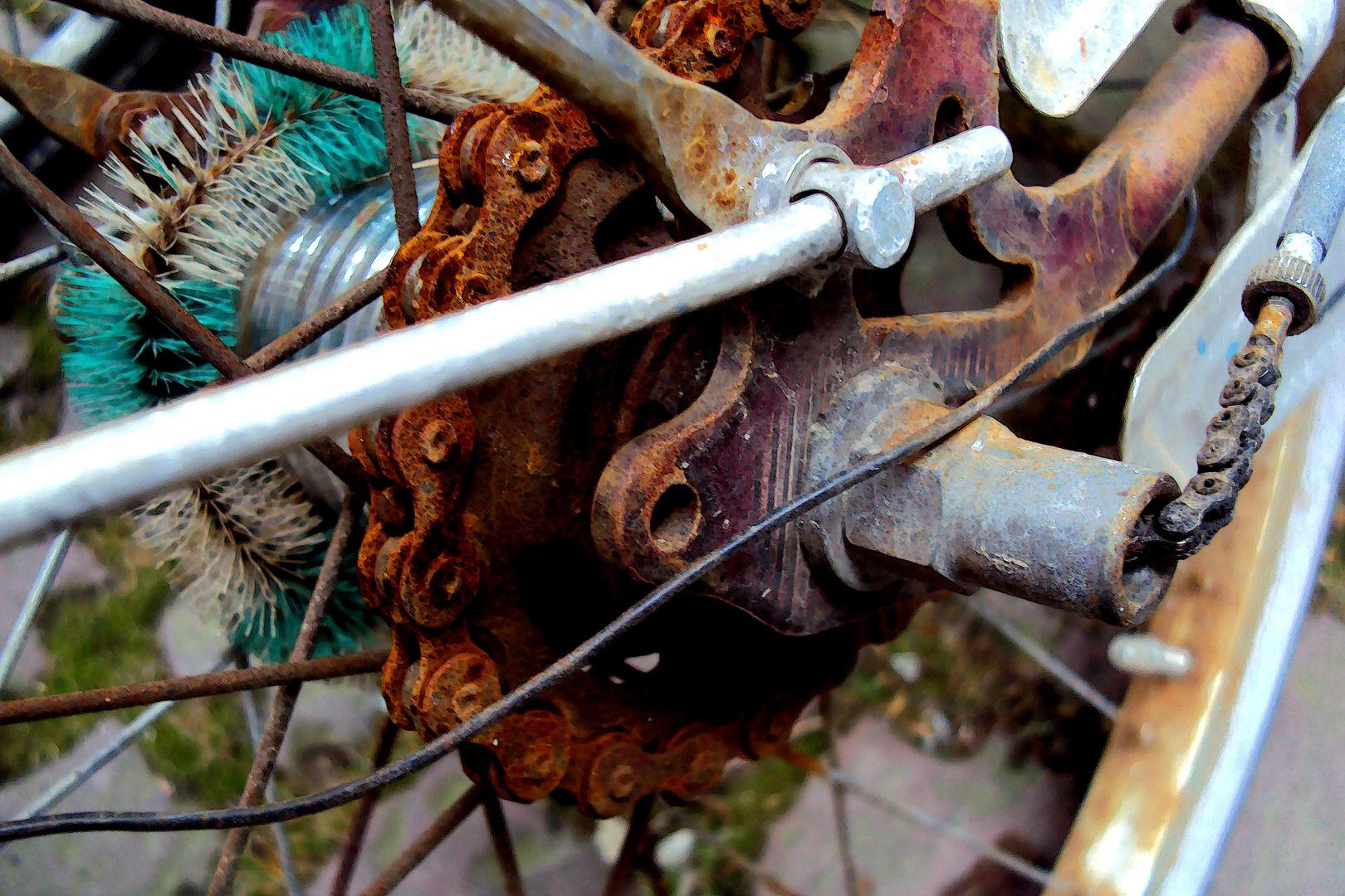 Freiburger Fahrradleiche (die Sechste)