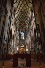 Freiburger - Münster
