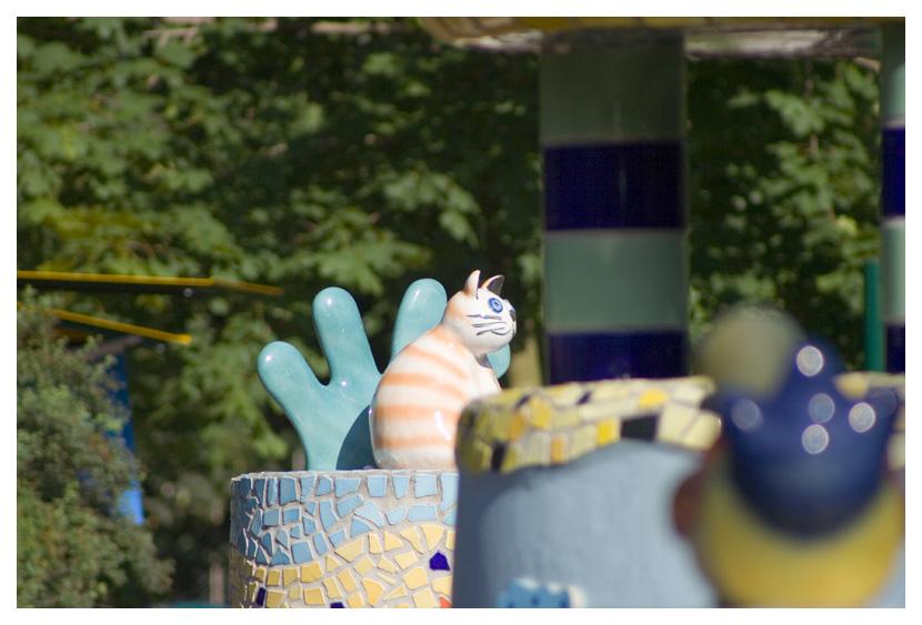 Freilaufende grinsende Katze in Schönbrunn ...
