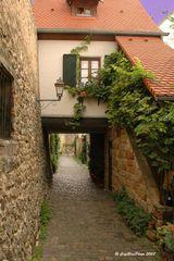 Freinsheim Stadtmauerweg