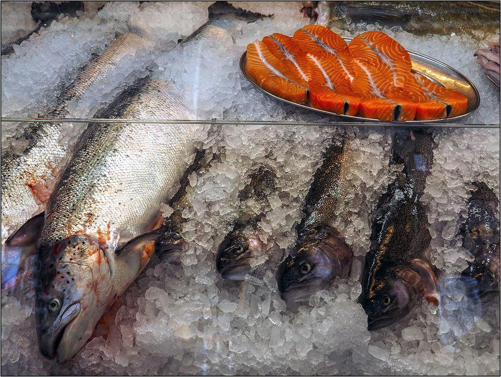 Freitag ist wieder einmal Fischtag