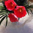 Freitagsblümchen für Gisela