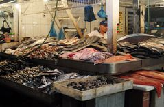 Freitagsfisch frisch aus der Markthalle