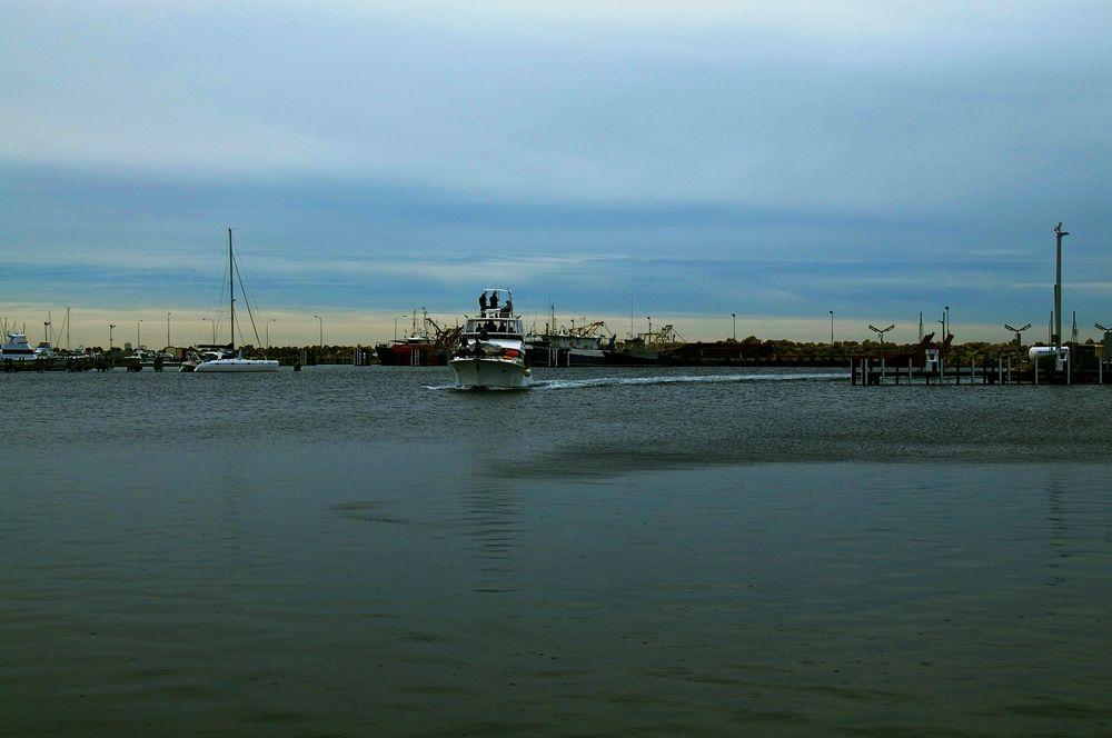 Fremantle Waters