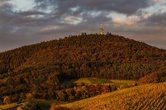 Fremersberg im Herbst