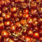 fresh cherries at the market