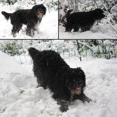 Freude am ersten Schnee