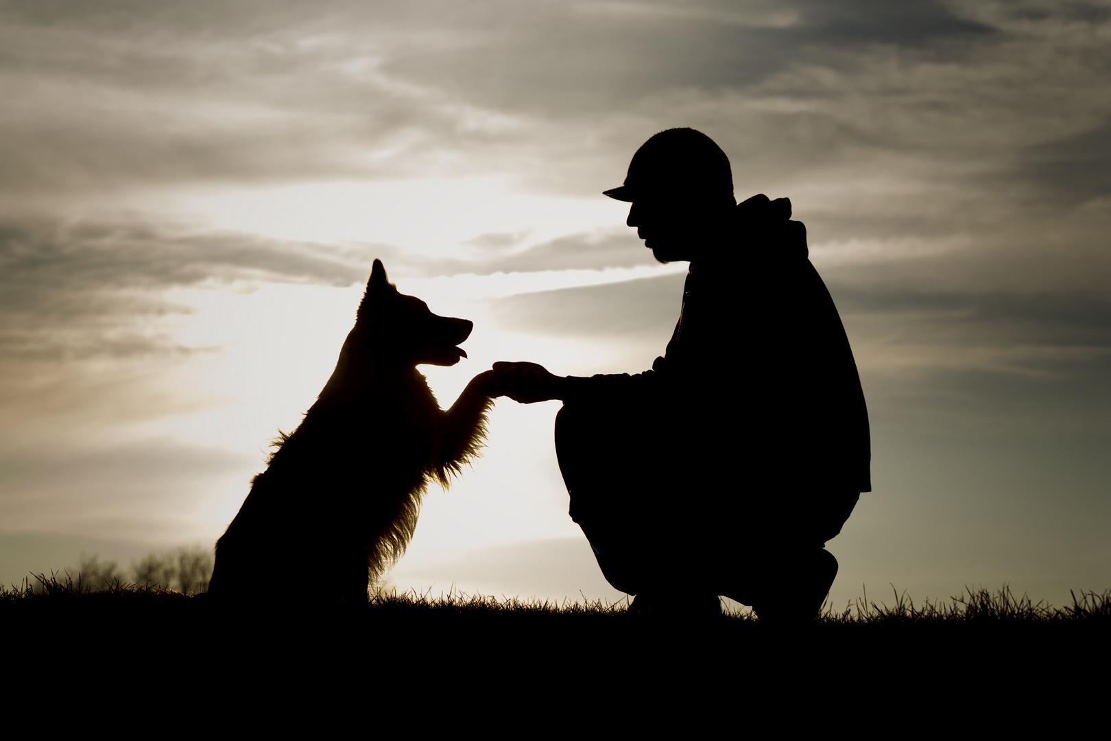 Freundschaft ! Foto & Bild | tiere, tier und mensch