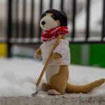 Frieda beim Schneeschaufeln-3