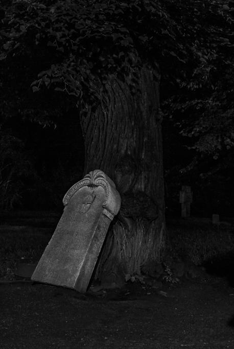 Friedhof am Bürgerpark