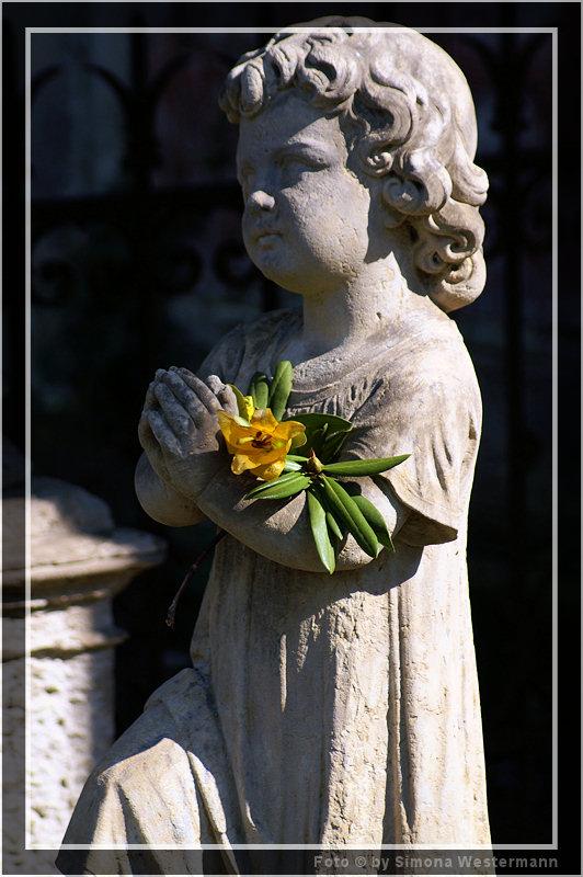 Friedhof Dresden - kleines Mädchen