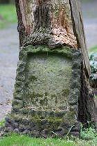 Friedhof Goslarsche Straße Braunschweig V