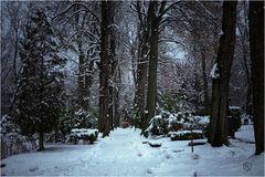 Friedhof im Schnee...