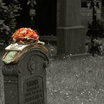 Friedhof-Impression  nahe Houthalen (Belgien)