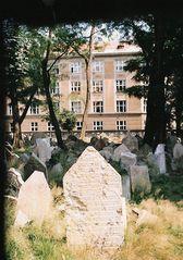 Friedhof in Prag