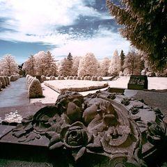 Friedhof Ohlsdorf (I) - Über den Tod hinaus
