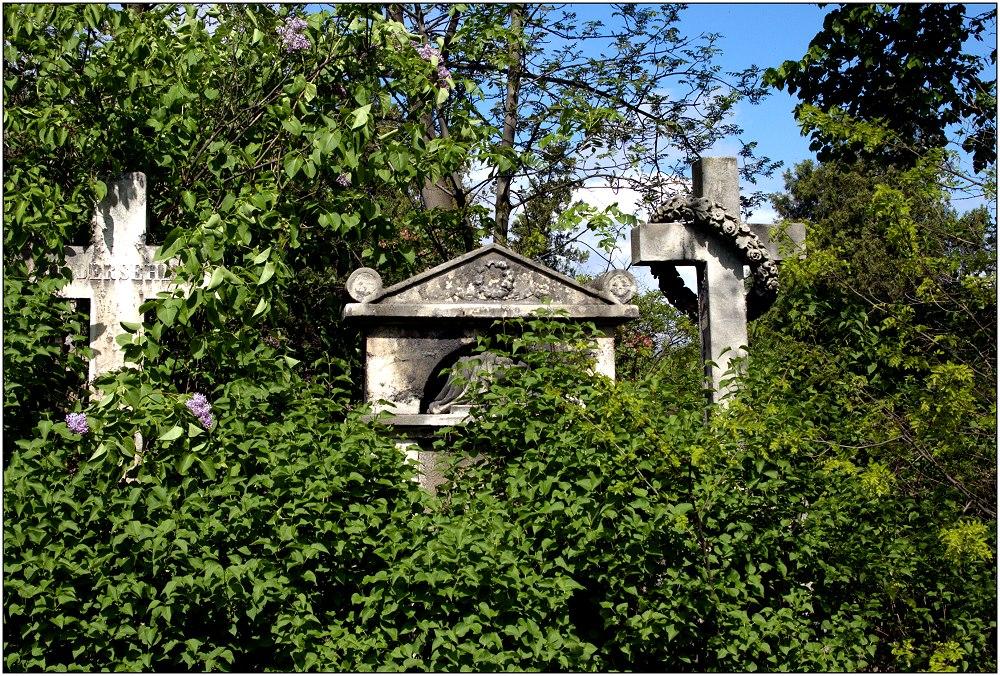 ... Friedhof St. Marx ...