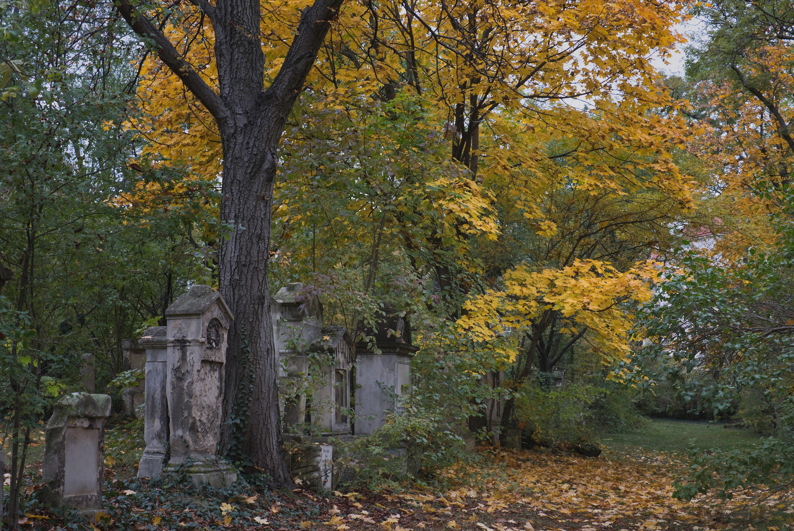 Friedhof St. Marx II