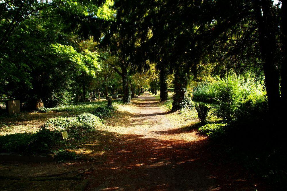 Friedhofs-Spaziergang