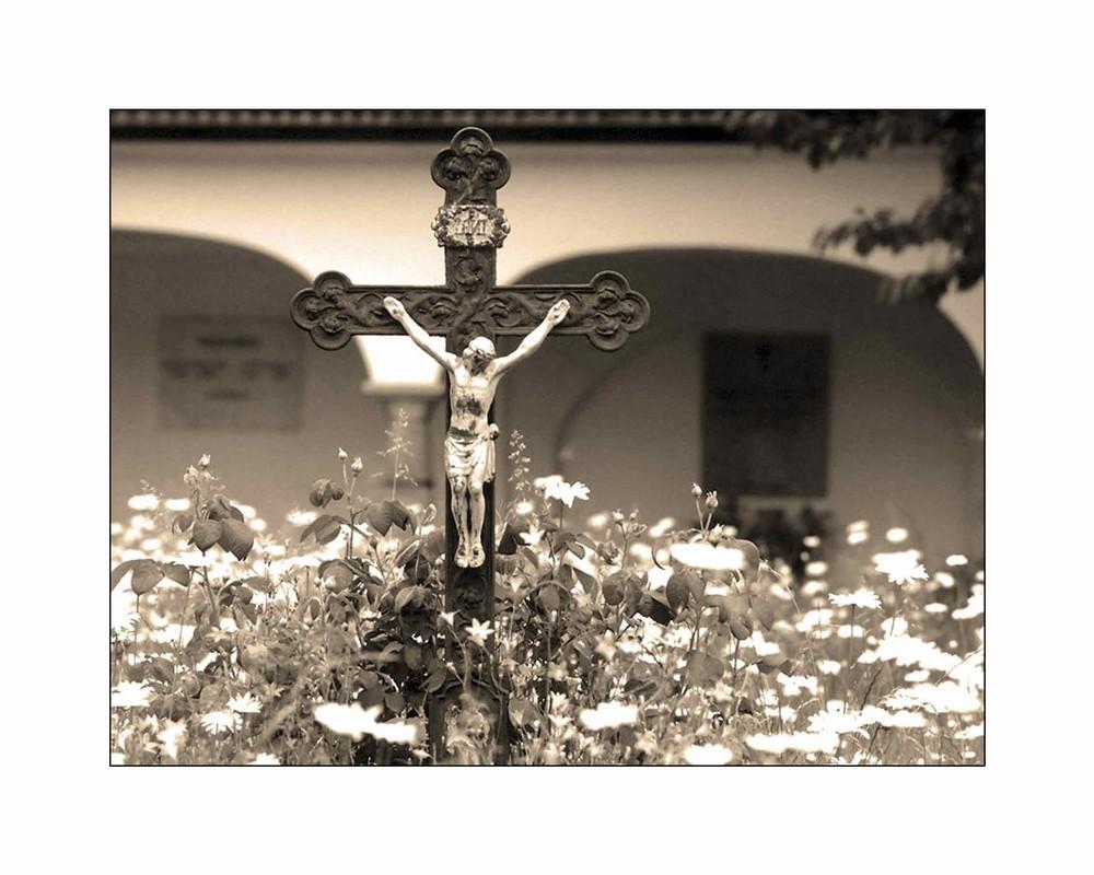 Friedhofsblumenwiese