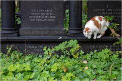 Friedhofswächter
