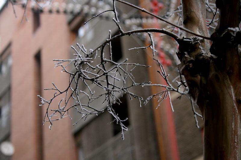 Frio en la ciudad