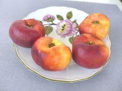 Frisch - fotogen - fruchtig
