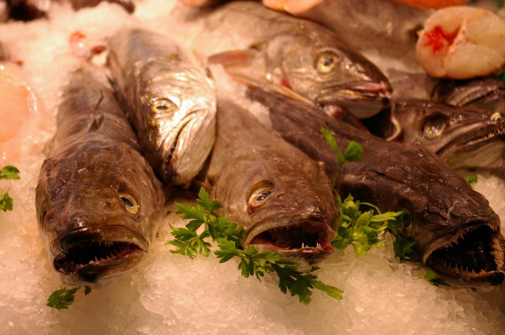 Frischer Fisch auf dem Markt in Barcelona