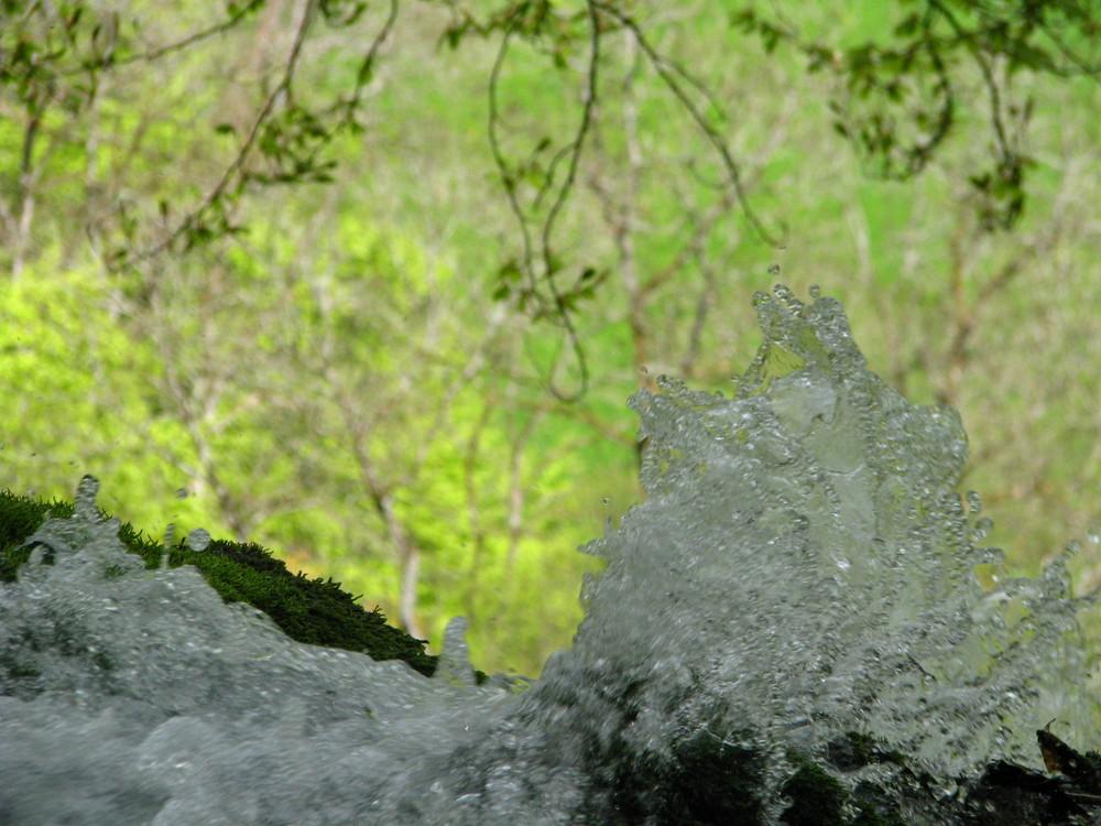 Frisches Bergquellwasser