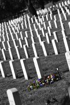 Frisches Grab in Arlington
