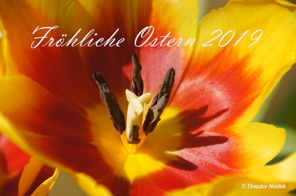 Fröhliche Ostern 2019